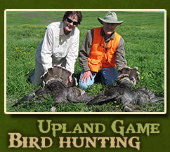 Upland Game